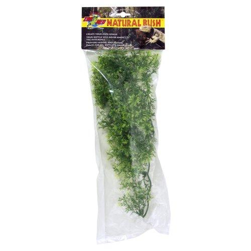Natural Bush Plant - Australian Maple  46cm