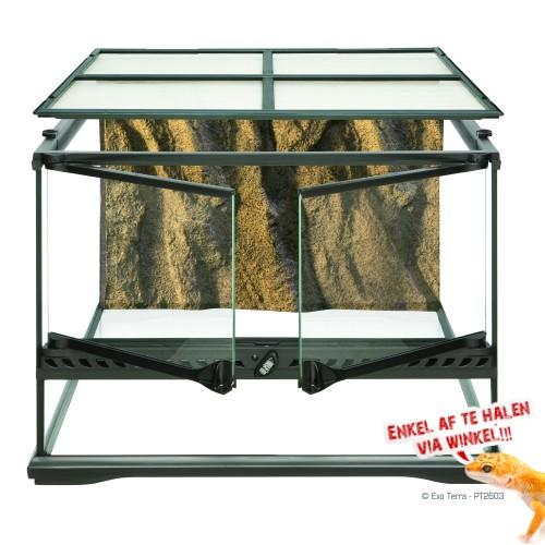 Small Terrarium - Low 45x45x30cm