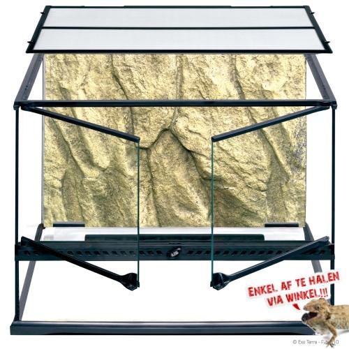 Medium Terrarium - Wide 60x45x45cm