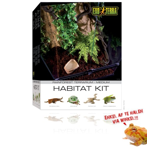 Starters Kit Rainforest - Medium 45x45x60cm