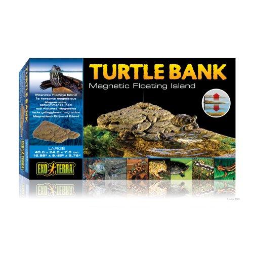 Turtle Bank - Large