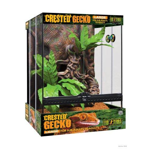 Crested Gecko Habitat Kit - 45x45x60cm