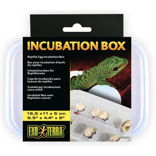 Incubation Box