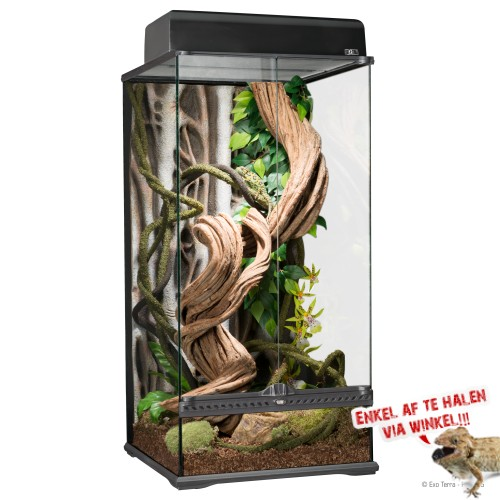 NaturalL Rainforest Terrarium Small X-Tall 45x45x90cm
