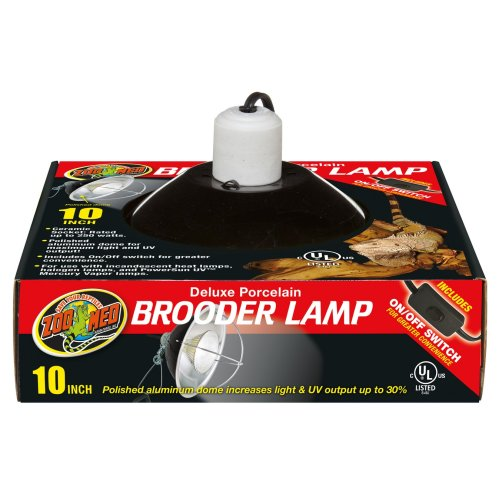 Porcelain Brooder Clamp Lamp 25cm