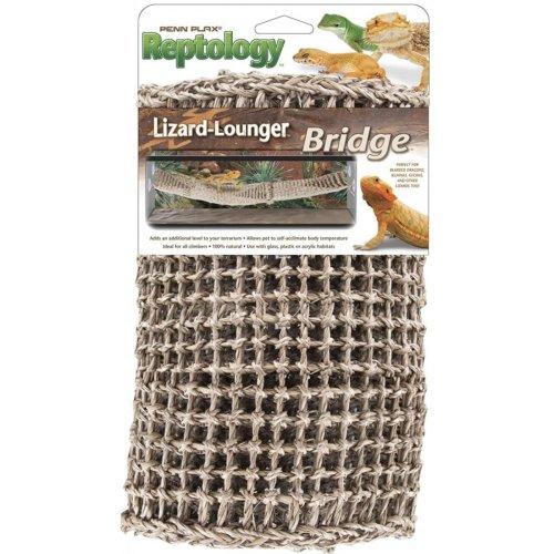 Bridge Lizard Lounger