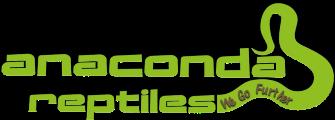 Anaconda Reptiles